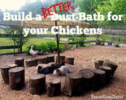 Nu Way Kitchen And Bath Build A Better Dust Bath For Your Chickens Fresh Eggs Daily