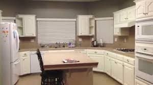 Oak Kitchen Cabinets Refinishing Kitchen Kitchen Cabinet Painting Intended For Lovely Cabinet