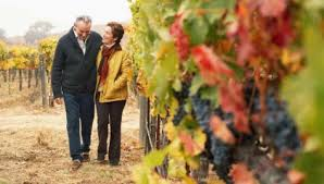 Mature couple walking in vineyard  first date