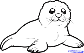 harp coloring page epic seal coloring pages 99 for your picture coloring page with