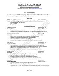 samples of resumes for highschool students peace corps uva career center peace corps sample resume