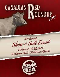 Chair Rock Angus 43rd Annual Red Roundup Red Angus Show U0026 Sale Event By Bouchard