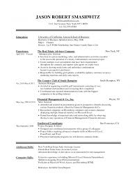 Blank Resume Examples Professional Cv Template Download Pdf