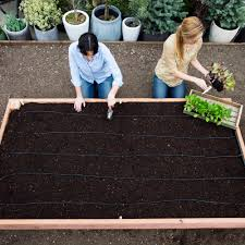 Planning A Raised Bed Vegetable Garden by How To Build A Raised Garden Bed Sunset