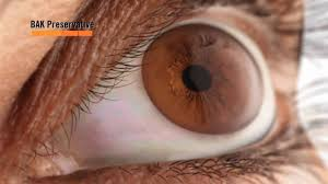 Human Anatomy And Physiology Marieb 9th Edition Quizzes Eye Anatomy Animation At Best Way To Study Anatomy And Physiology