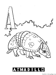 armadillo coloring page getcoloringpages com