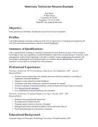 Good Customer Service Skills Resume Example Of Resume Customer Services Skills