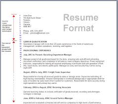 Examples For A Resume by Picture Of A Resume 5 Uxhandy Com