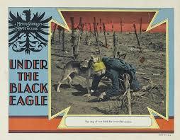 Under the Black Eagle