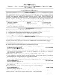 Writing A Summary For Resume Hr Resume Examples Hr Generalist Resume Writer Hr Generalist