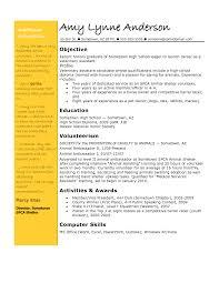 Cosmetologist Resume Objective Resume Objective Teaching Resume Cv Cover Letter