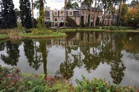 russian mansions mirror online