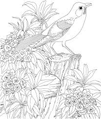 coloring pages free to print feathers to print and cut out