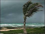 BBC Brasil - Notícias - El Niño pode trazer seca ao nordeste e à ...