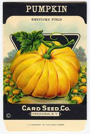 vintage halloween clip art adorable pumpkin seed packet seed
