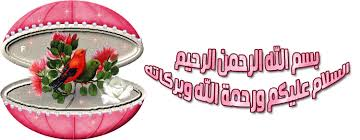 www.malaysia29.com