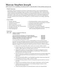 Chief Accountant Resume Sample Resume Chief Engineer Cv Retail Sales Skills Resume How To Write