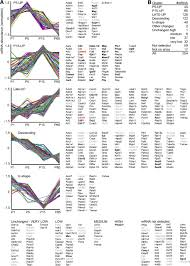 Indeed Ckm Quantitative And Integrative Proteome Analysis Of Peripheral Nerve