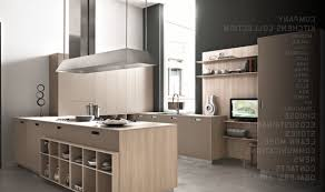 Modern Kitchen Designs With Island by Appealing Modern Kitchen Remodel With L Shape Kitchen Cabinetry