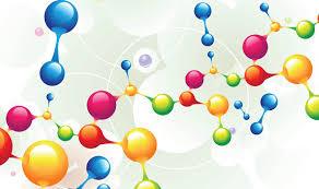 Biochemistry and Molecular Biology PhD Program   Michigan Tech     Biochemistry and Molecular Biology   PhD