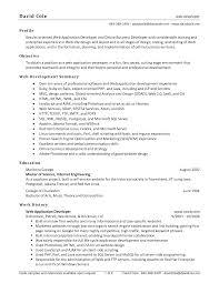 Best Software Developer Resume by Best Solutions Of Sample Resume Of Net Developer In Example