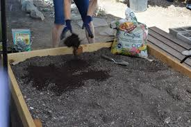 Manure For Vegetable Garden by Using Compost In Your Garden Plant California