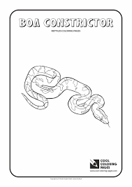 tadpole coloring page boa constrictor coloring page fresh 2870