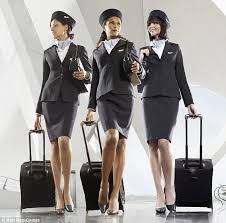 Flight Attendant Job Description Resume by Careers Art D Pilot State Of Connecticut Westchester County Khpn