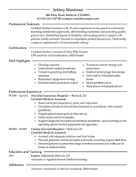 Examples Of Resumes   Resume Career Summary Professional Samples     Job and Resume Template professional resume template with a resume summary example