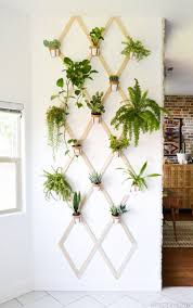 how to display plants indoor 42 diy projects plant wall diy
