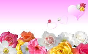 வால்பேப்பர்கள் ( flowers wallpapers ) - Page 20 Images?q=tbn:ANd9GcRN814QlrvhHRxWwCy7RDzIssbRHk2WMtiXQxcBiOygwkkzY8j04w