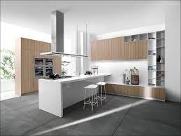 Euro Design Kitchen 100 Kitchen Design Stores Kitchen Contemporary Black White