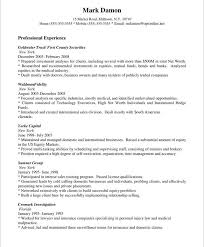 What Is Job Profile In Resume by Example Of Resume Profile Sample Resume Profile Statements