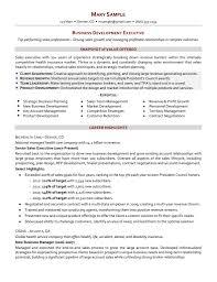 Sales Manager Cv Word Format International Sales Resume Account