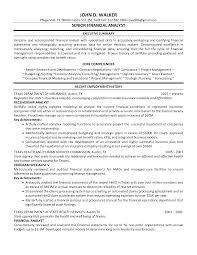 Resume Examples For Audit Managers     BORH