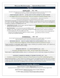 for your CEO and executive resume writing needs