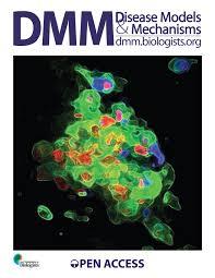 An immediate   late gene expression module decodes ERK signal     PLOS PNG