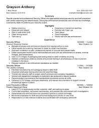 Examples Of Professional Summary For Resume by Unforgettable Security Officers Resume Examples To Stand Out