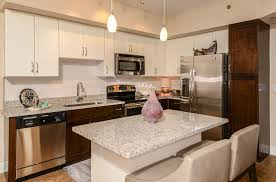 Florida Home Interiors by One Bedroom Apartments In Tampa Fl Excellent Home Design Modern In