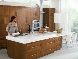 Moen 7175csl Level One Handle High Arc Pulldown Kitchen Faucet