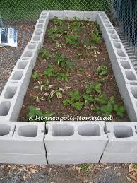 building our concrete raised bed minneapolis homestead
