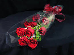 Valentine Gift- Red Rose