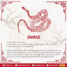 Lucky Color Of The Year 2017 Year Of The Rooster 2017 Chinese Zodiac Predictions U2013 Mnltoday Ph