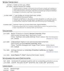 Financial CV template