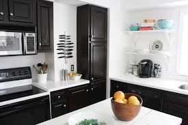 Oak Kitchen Cabinets Refinishing Best Way To Refinish Kitchen Cabinets Extravagant Home Design