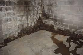 water proofing basement basement waterproofing costs houselogic