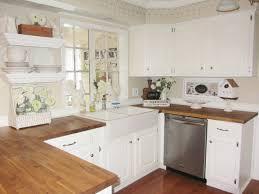 Ikea Kitchen Birch Kitchen Cabinet Canada Home Decoration Ideas