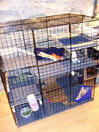 housing your rabbit indoors rabbit cages bunny condos