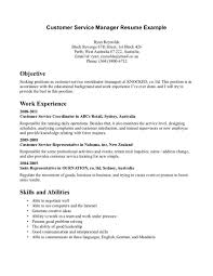 Resume Summary Examples Customer Service by Customer Service Summary Resume Resume For Your Job Application