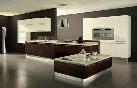 81 modern kitchen interior wood flooring for kitchen 100 images of kitchen interiors 25 white and wood kitchen